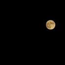 満月の夜の憂鬱