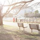 夕方のベンチ